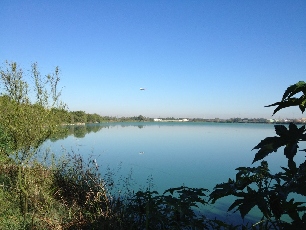 Hornsby Bend: a great place to watch birds and planes.