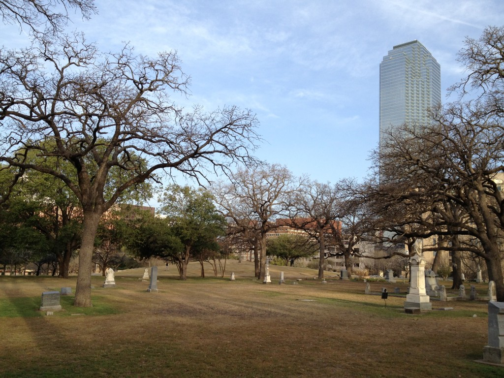 Pioneer Park Cemetary in front of the Dallas Convention Center, home of my first ever Bewick's wren.